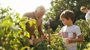 post-thumbnail - Grandparents: 5 Fun Activities to Do with Your Grandchildren